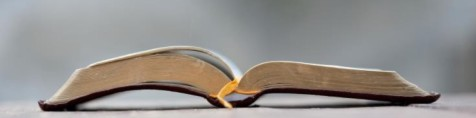cropped-Open-Bible-gray-compressed